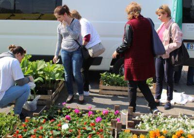kobiety oglądają sadzonki kwiatów