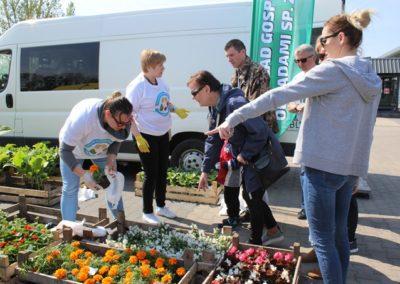 kobiety pakują sadzonki kwiatów