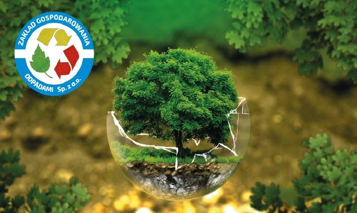 grafika przedstawiająca drzewo na zielonym tle wraz z logo ZGO